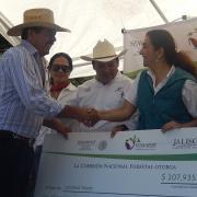 Reforestación Jalisco 2014 - 1