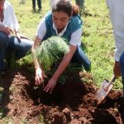 Reforestación Jalisco 2014 - 3